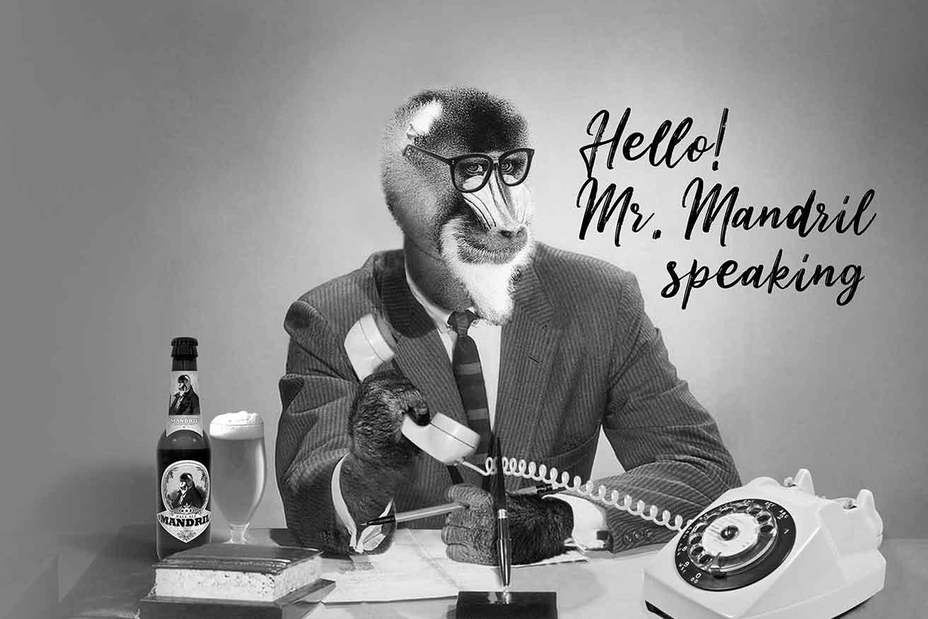 Mr Mandril | Contact